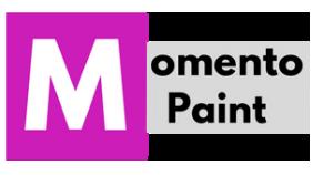 MOMENTO PAINT